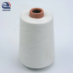 Ring Spun 100% Nylon 66 Twisted Knitting Nylon Yarn